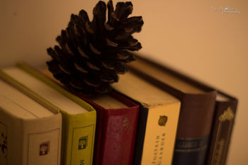 Books : love. The year is almost over! - бесплатный image #318267