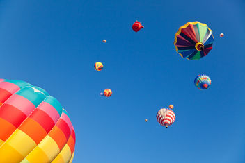 Vibrant Hot Air Balloons - image gratuit #321547