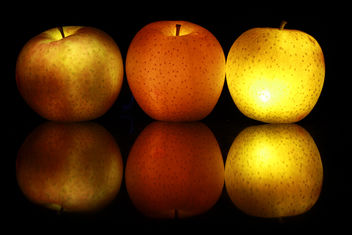 Apples - Free image #322357