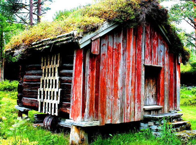 Norwegian Log cabin #viking #dailyshoot #Molde - image #323467 gratis