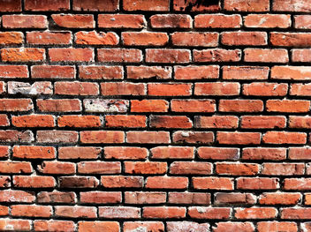 Just a Brick Wall - Free image #323487