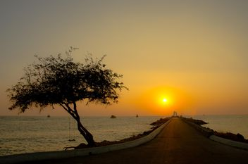 Romantic road on the beach - image #326537 gratis