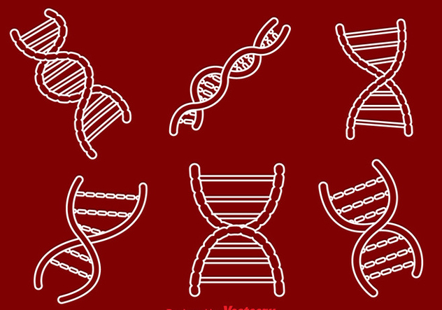 Double Helix Outline Icons - vector gratuit #326787