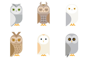 Free Cute Owl Vector - бесплатный vector #327927