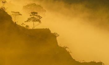 Morning mists - image gratuit #328097