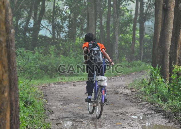 Girl riding a bicycle - Free image #330367