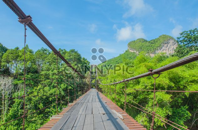 pedestrian bridge in forest - image gratuit #330997