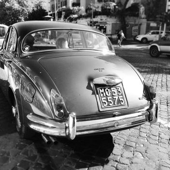 Back view of Jaguar car, black and white - image gratuit #331677