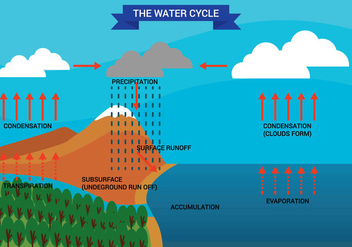 Water Cycle Diagram Vector - бесплатный vector #332607