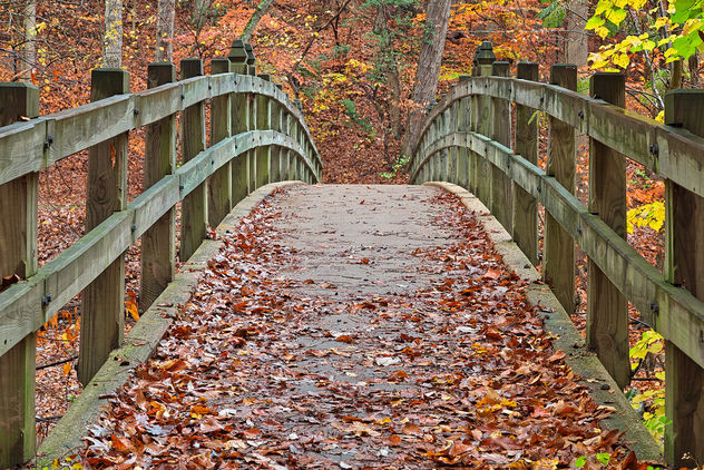 Bridge to Fall - HDR - image gratuit #332757