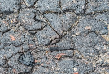 Close up of Wet mud - Free image #332787