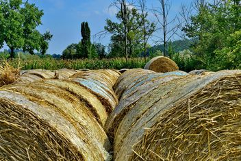 Countryside agriculture - бесплатный image #333737