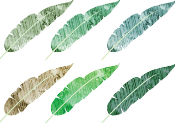 Watercolor Banana Leaves Vectors - Free vector #338747