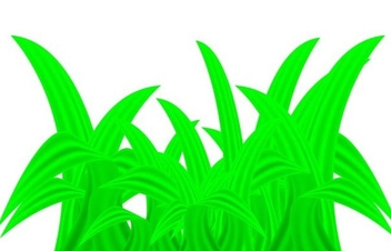 Green plant - Free vector #339007