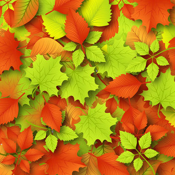 Autumn Leaves Background - vector #340327 gratis