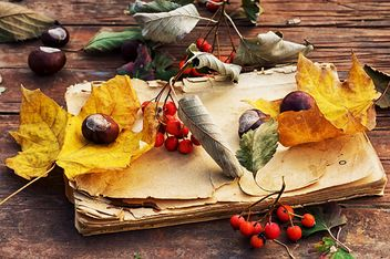 Old book with autumn leaf and berries on wooden table - image #342467 gratis