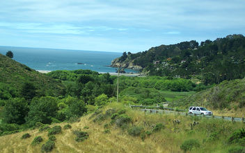 USA (Sausalito, CA) Magnificient landscape combines hillside with shoreline - image gratuit #343957