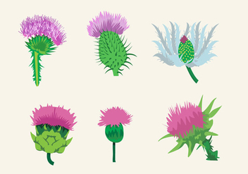 Beautiful Thistle - vector gratuit #344957