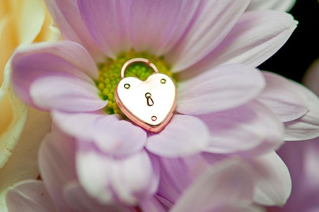 Gold lock in shape of heart in flower - image gratuit #345107