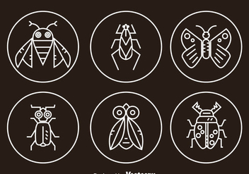 Insect Line Icons - vector gratuit #345437