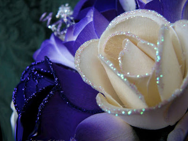 Glittered Rose - Free image #345817