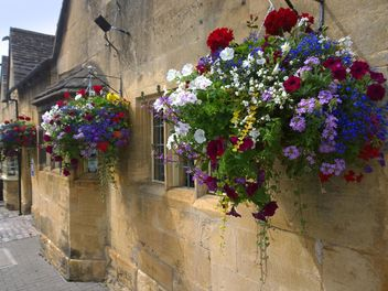 Flowers on facade of house in Chipping Campden - бесплатный image #346217