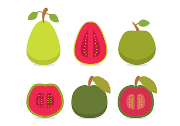 Guava Vector Side Views - vector gratuit #347647
