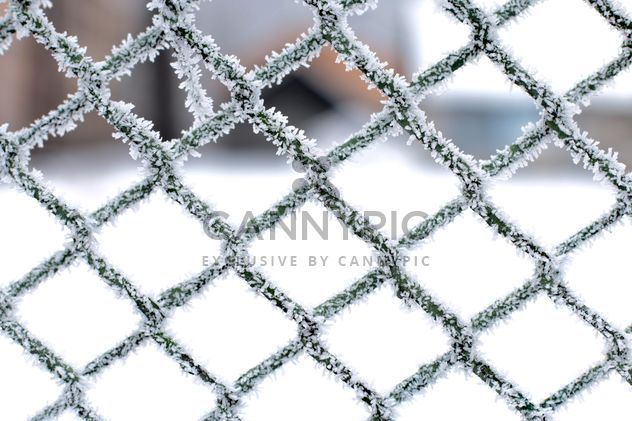 Frozen snow on metal fence - Free image #347717