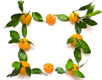 Fresh tangerines with green leaves - image gratuit #347977