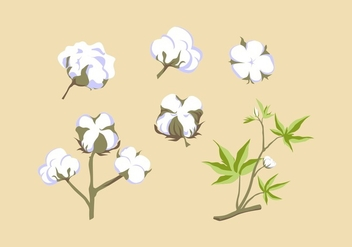 FREE COTTON PLANT VECTOR - бесплатный vector #348117
