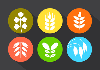 Set of Grains in Vector - Kostenloses vector #350887