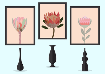 Vector Illustration of Protea Flowers - vector gratuit #351737