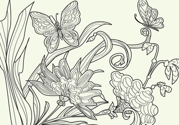 Adult Coloring Papillon Vector - Kostenloses vector #352417