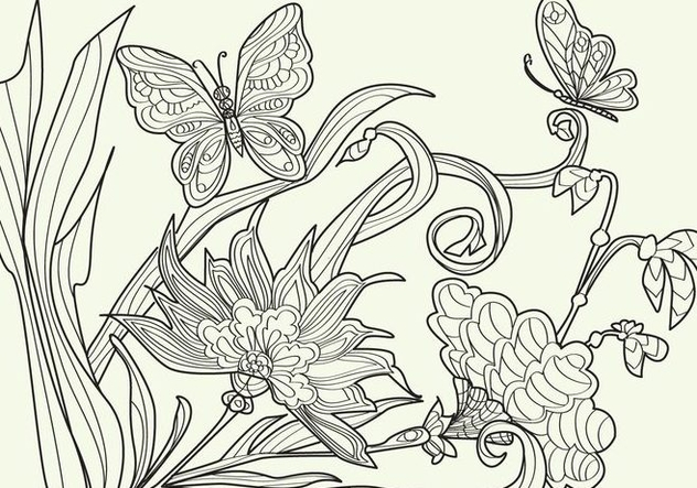 Adult Coloring Papillon Vector - Free vector #352417