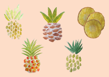Free Watercolor Pineapple Vector Pack - vector gratuit #353797