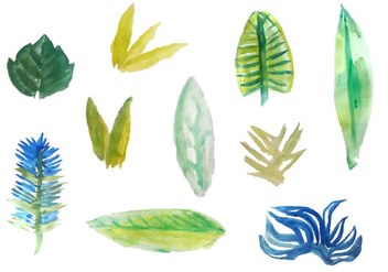 Free Watercolor Tropical Leaves Vectors - Free vector #353807