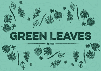 Free Green Leaves Vector - бесплатный vector #354007
