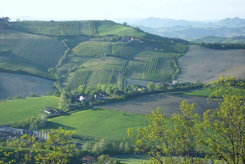 Italy (Dozza) Vineyards and wineries - бесплатный image #355827