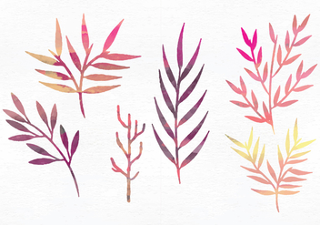 Vector Watercolor Branches - vector gratuit #356287
