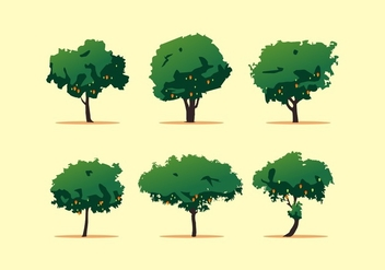 FREE MANGO TREE VECTOR - бесплатный vector #357417