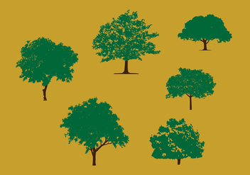 Mango Tree Vector Pack - vector gratuit #359867