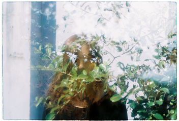 Film #swap with Amy Chu - Free image #361477
