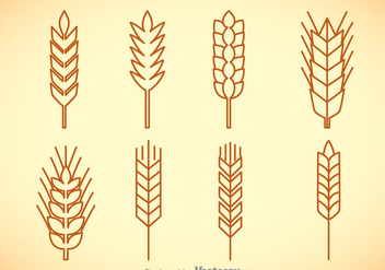 Wheat Stalk Vector Sets - vector gratuit #363307