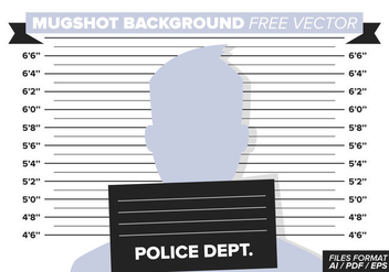 Mugshot Background Free Vector - vector gratuit #364597