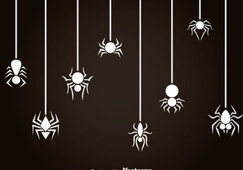 White Spider And Tarantula Vector - vector gratuit #365957