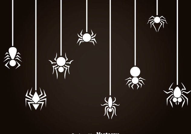 White Spider And Tarantula Vector - Kostenloses vector #365957
