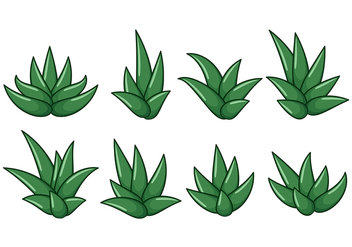 Free Maguey Vector - Free vector #368717