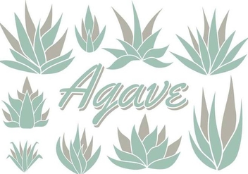 Free Maguey Vector - Free vector #368807