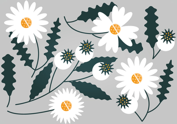Vector White Floral Set - Kostenloses vector #369757