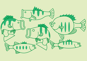 Vector Bass Fish - Free vector #370127